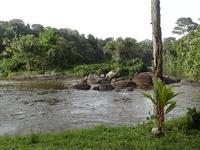 Upper Sruiname River