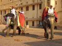 Indien Jaipur Amber Fort
