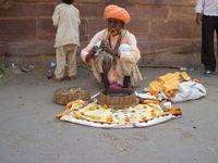 Indien Mandore Gärten Schlangenbeschwörer