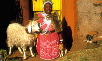 Dorfleben in Lesotho