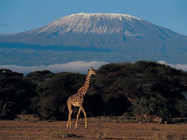Tansania & Sansibar mit Kindern, 21 Tage