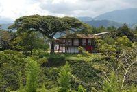 Kaffee Hacienda