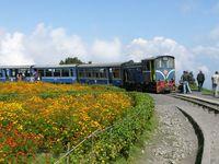 Schmalspurbahn, Südindien