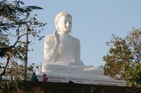 Buddhastatue in Anuradhapura