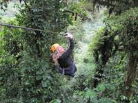 CR_Monteverde_Canopy_Arleen Goerke(1)_ARG_FOC